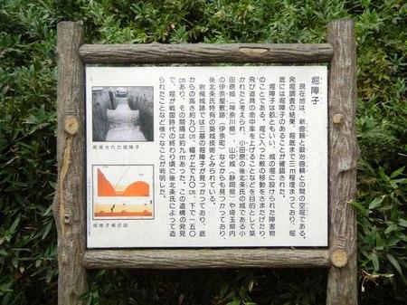 iwatsuki2.JPG