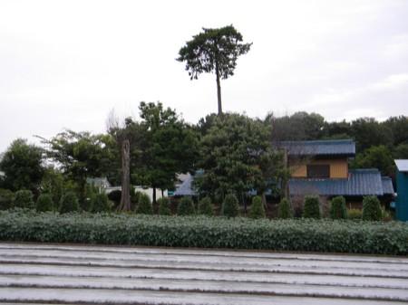DSCN0941.JPG